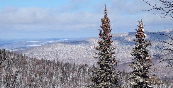 Panorama du sentier des Sources hiver