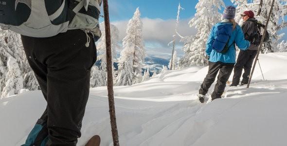 Ski Hok Altai Skis